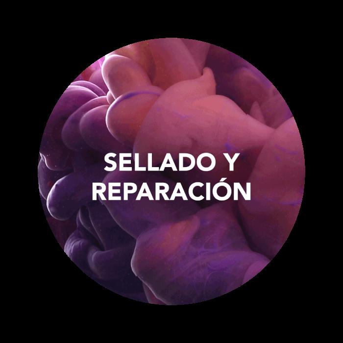 Sellado y reparación